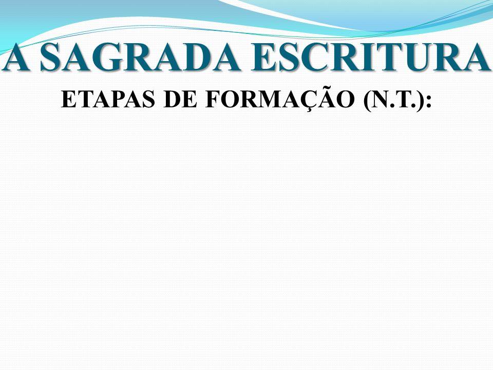 ETAPAS DE FORMAÇÃO (N.T.):