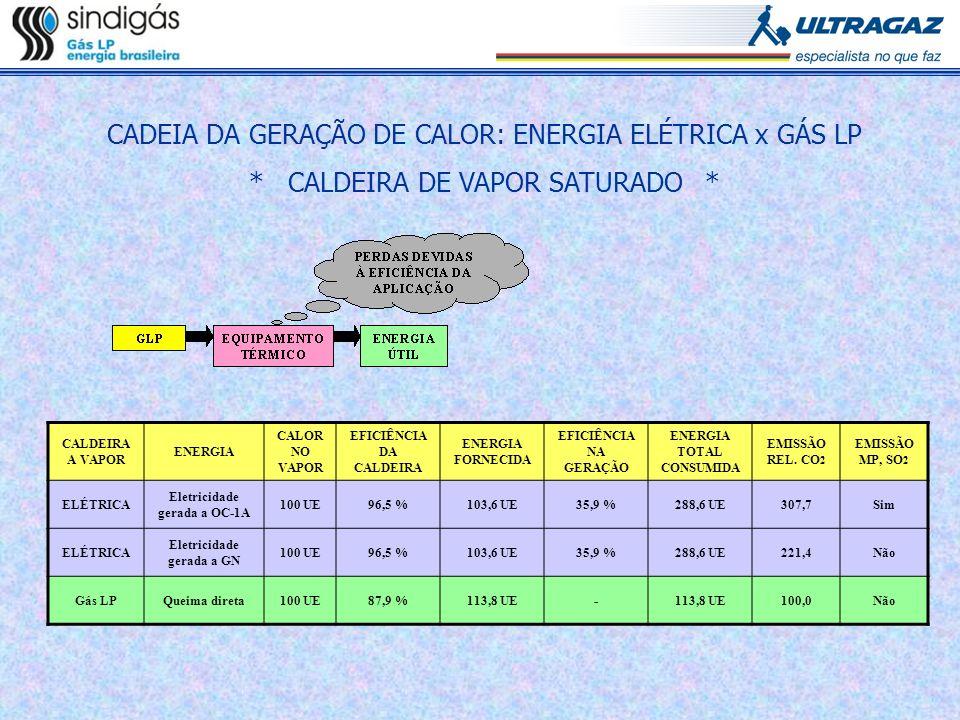 CADEIA DA GERAÇÃO DE CALOR: ENERGIA ELÉTRICA x GÁS LP