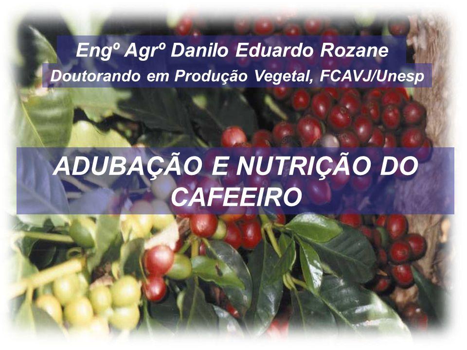 ADUBAÇÃO E NUTRIÇÃO DO CAFEEIRO