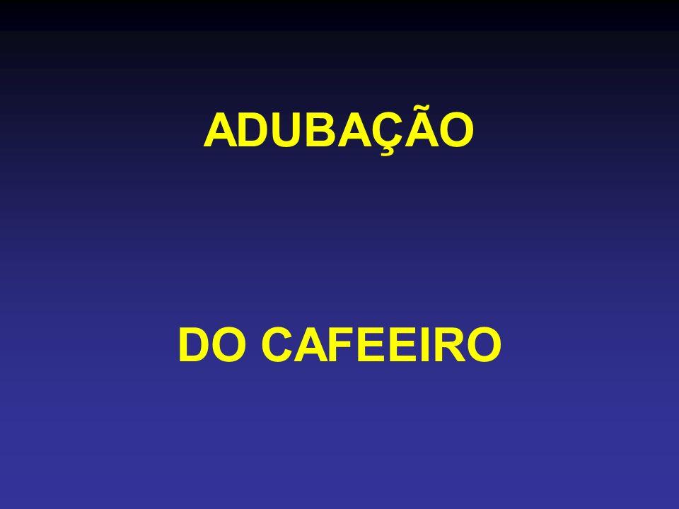 ADUBAÇÃO DO CAFEEIRO