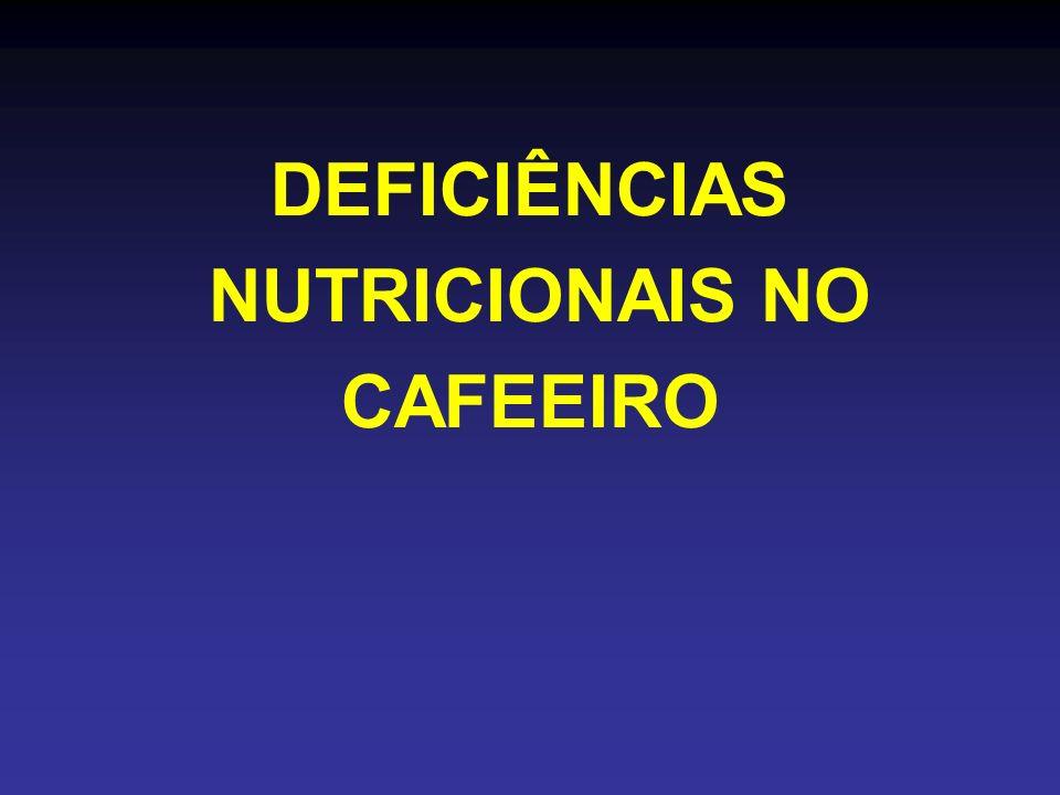 NUTRICIONAIS NO CAFEEIRO