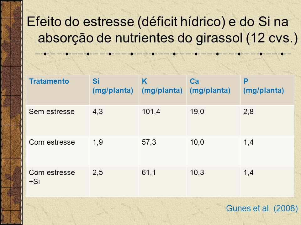Efeito do estresse (déficit hídrico) e do Si na absorção de nutrientes do girassol (12 cvs.)