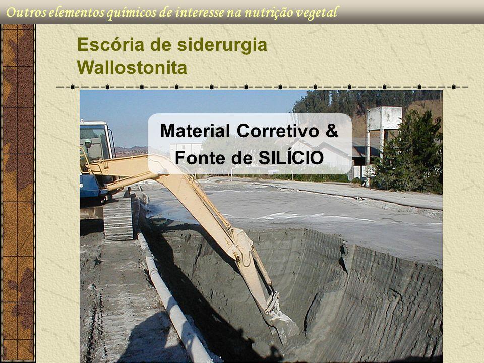 Material Corretivo & Fonte de SILÍCIO