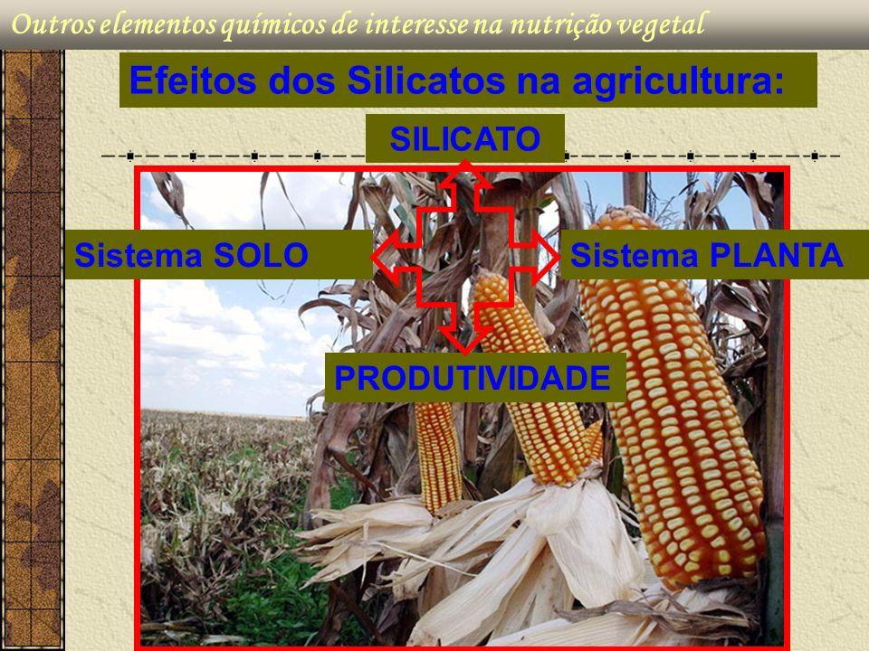 Efeitos dos Silicatos na agricultura: