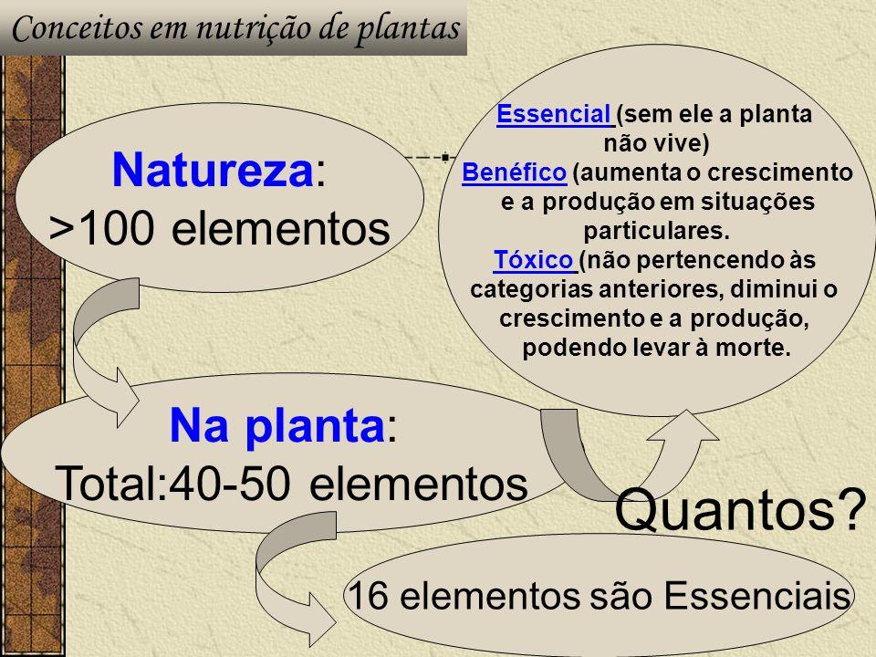 Quantos Natureza: >100 elementos Na planta: Total:40-50 elementos
