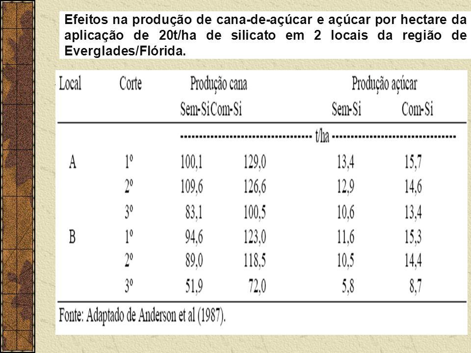 Efeitos na produção de cana-de-açúcar e açúcar por hectare da aplicação de 20t/ha de silicato em 2 locais da região de Everglades/Flórida.