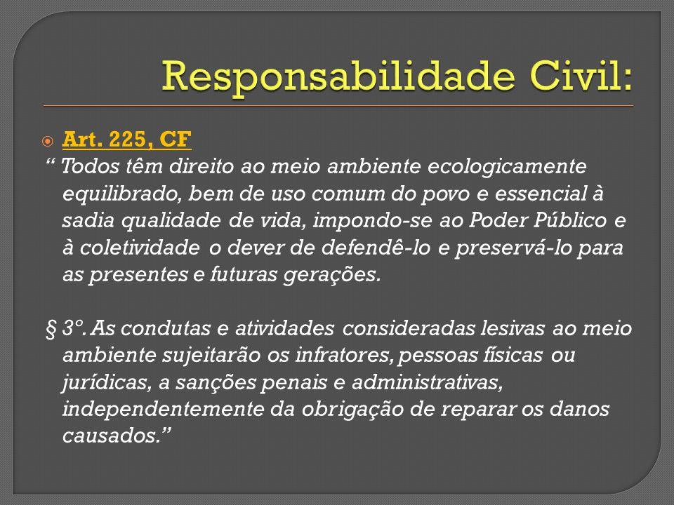 Responsabilidade Civil: