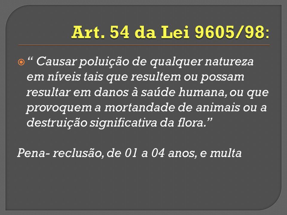 Art. 54 da Lei 9605/98:
