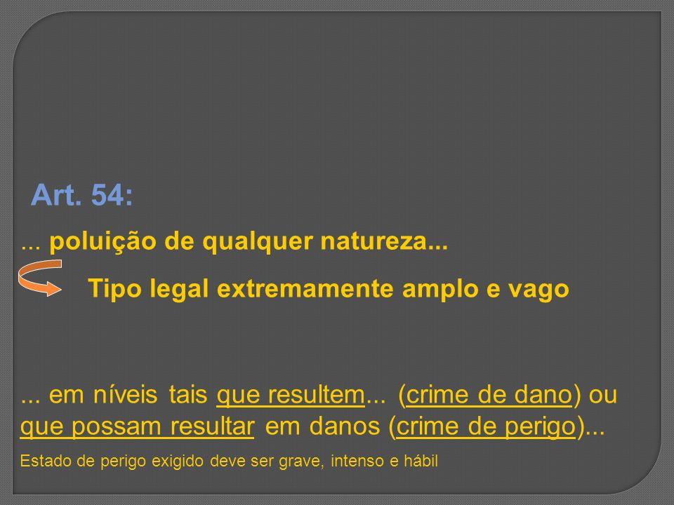 Art. 54: ... poluição de qualquer natureza...