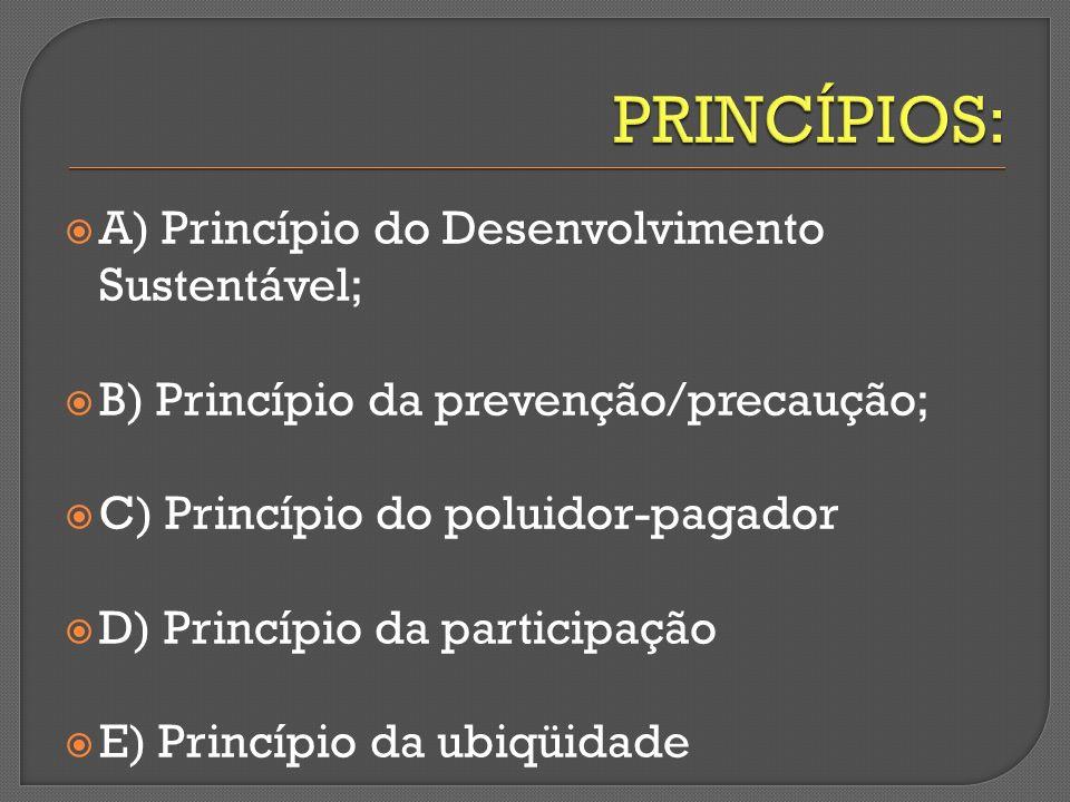PRINCÍPIOS: A) Princípio do Desenvolvimento Sustentável;
