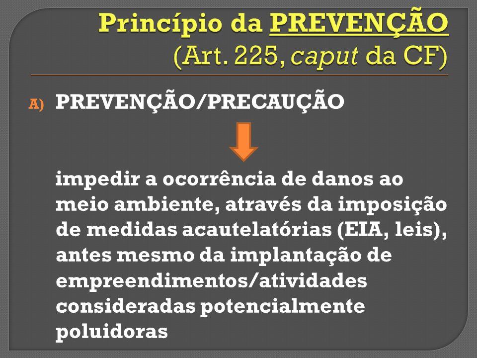 Princípio da PREVENÇÃO (Art. 225, caput da CF)