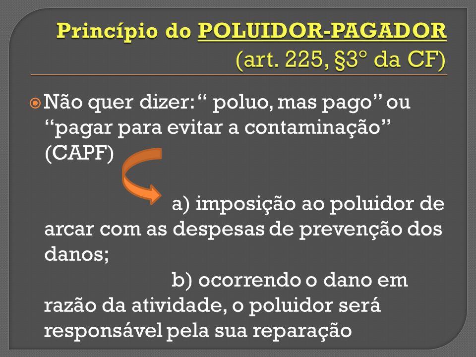Princípio do poluidor-pagador (art. 225, §3º da CF)
