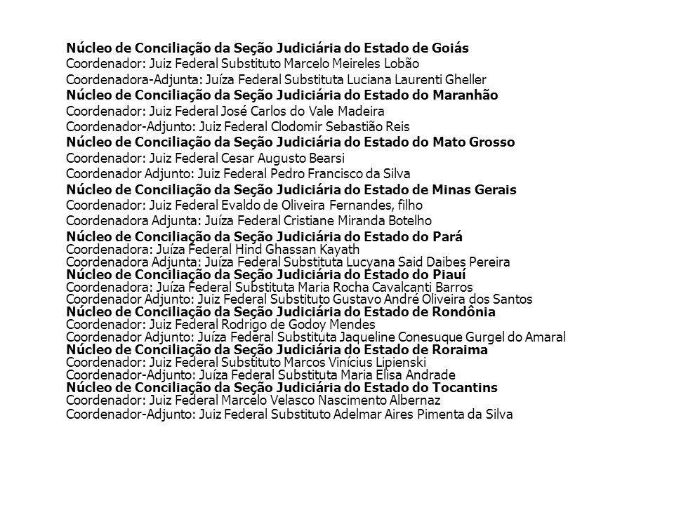 Coordenador: Juiz Federal Substituto Marcelo Meireles Lobão