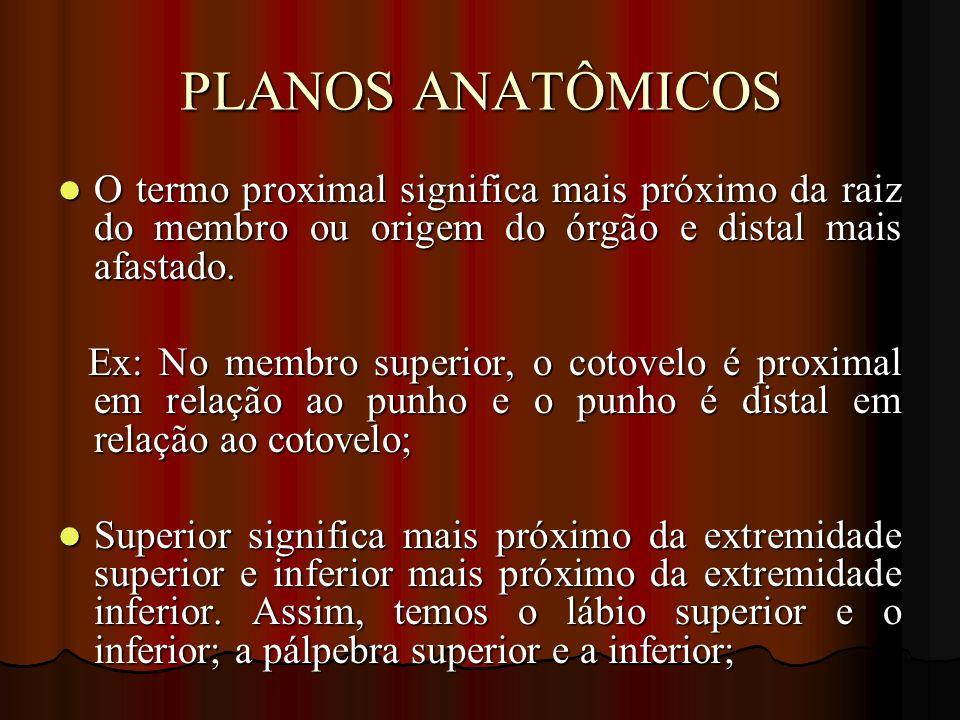 PLANOS ANATÔMICOS O termo proximal significa mais próximo da raiz do membro ou origem do órgão e distal mais afastado.