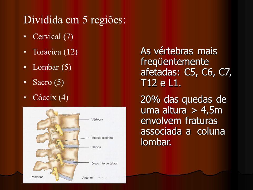 Dividida em 5 regiões: Cervical (7) Torácica (12) Lombar (5) Sacro (5) Cóccix (4)