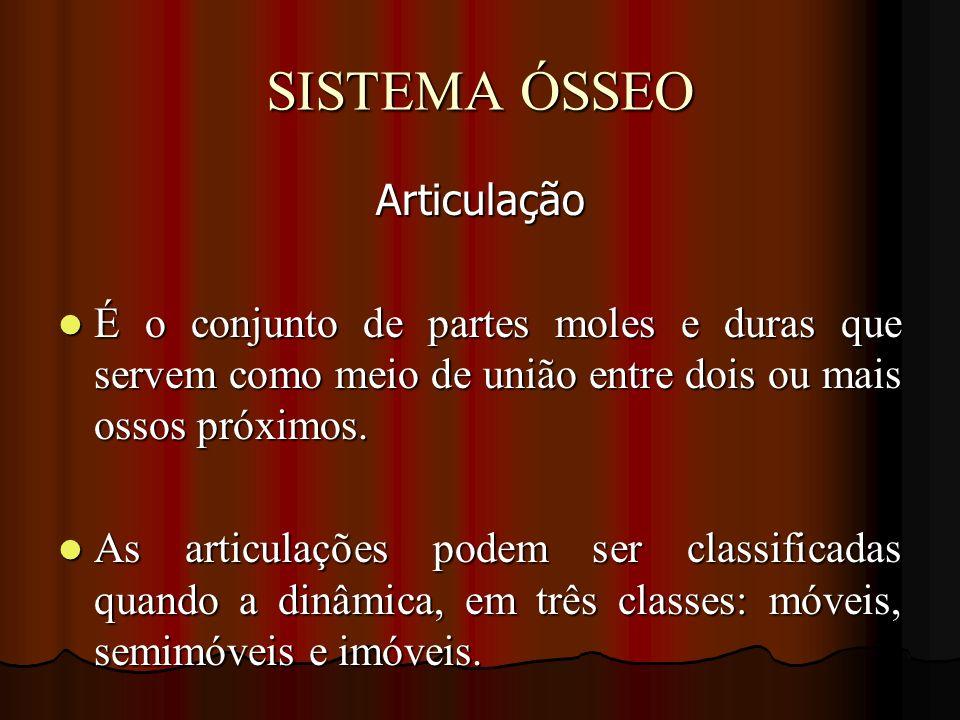 SISTEMA ÓSSEO Articulação