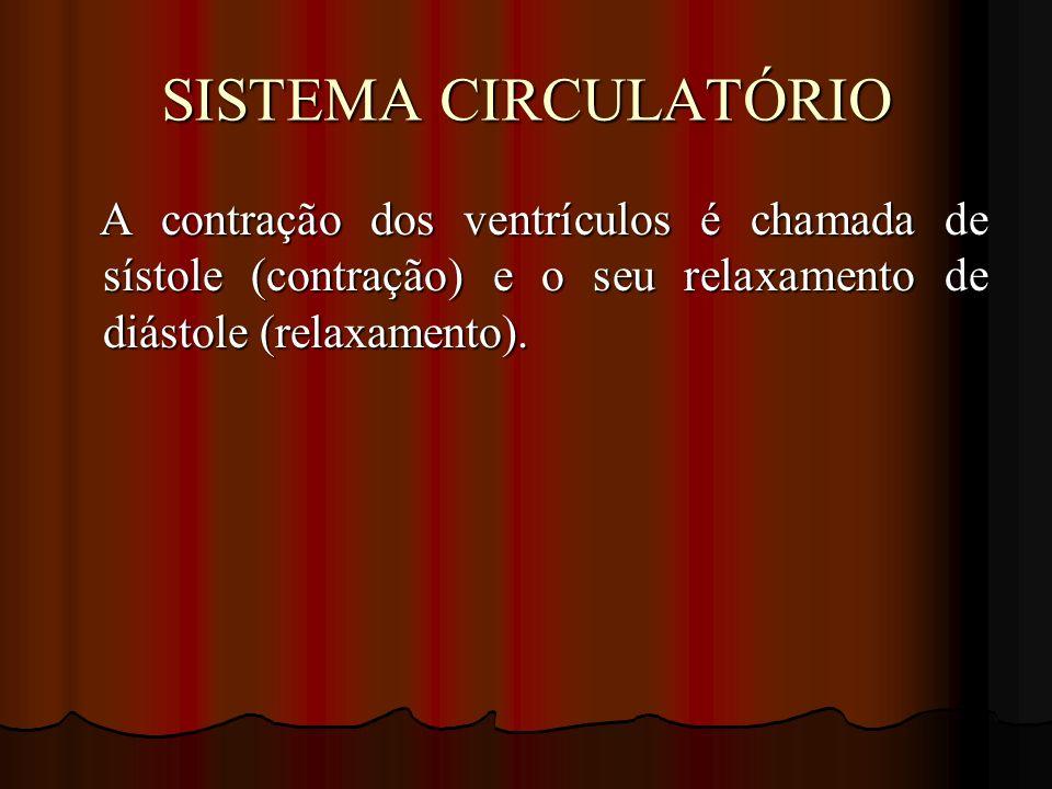 SISTEMA CIRCULATÓRIO A contração dos ventrículos é chamada de sístole (contração) e o seu relaxamento de diástole (relaxamento).