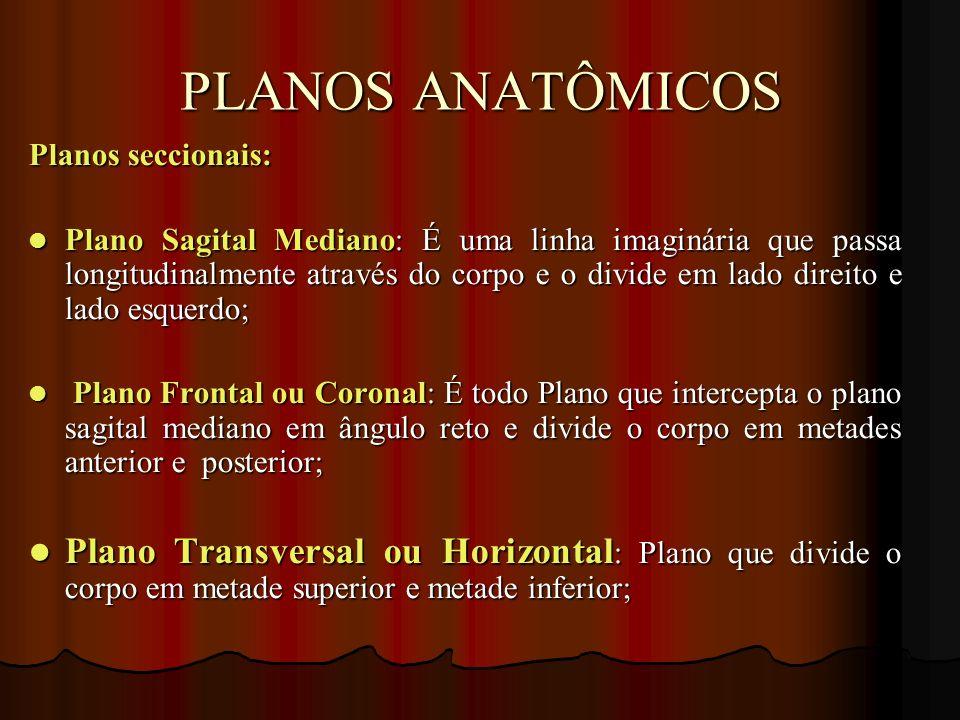 PLANOS ANATÔMICOS Planos seccionais:
