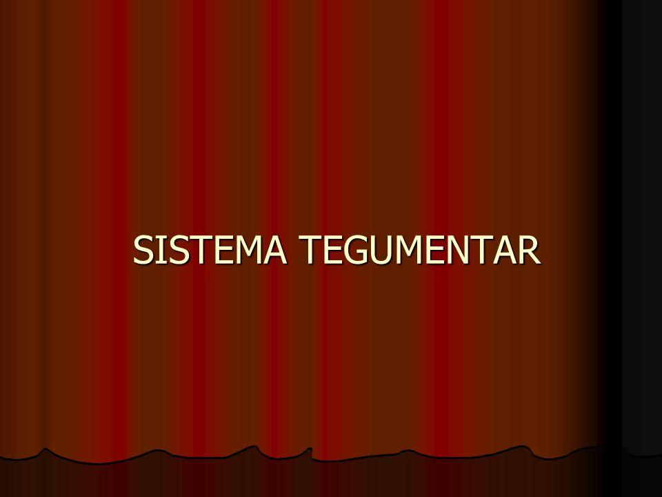 SISTEMA TEGUMENTAR