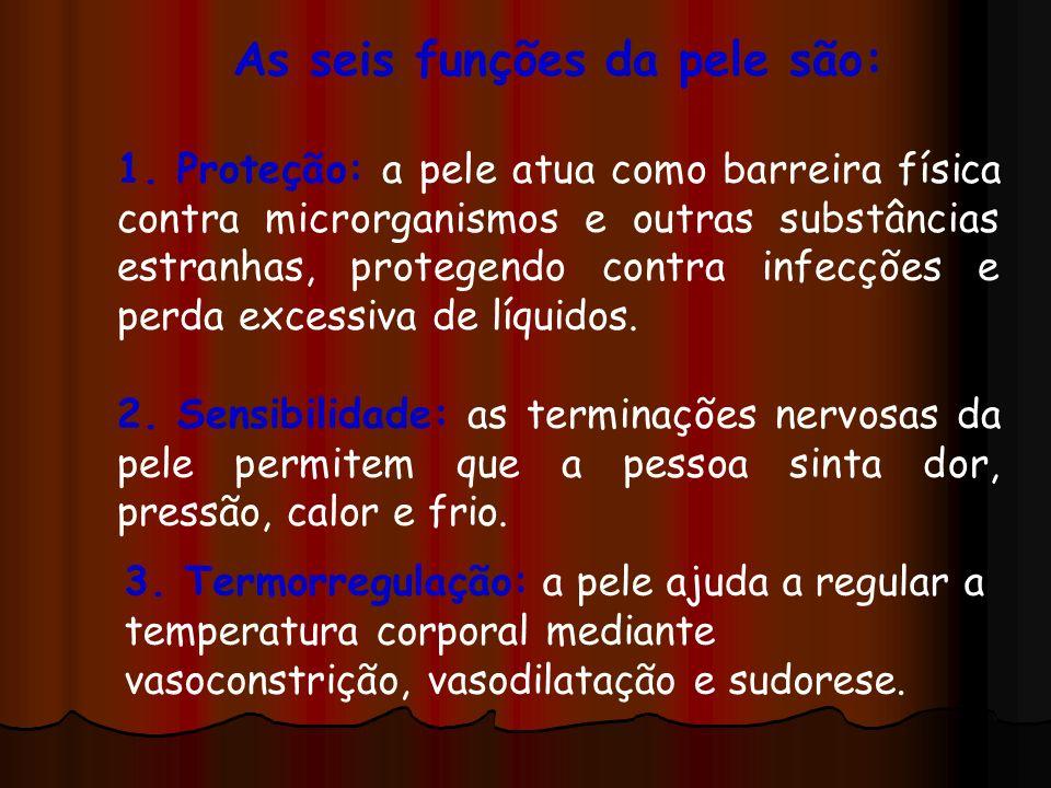 As seis funções da pele são: