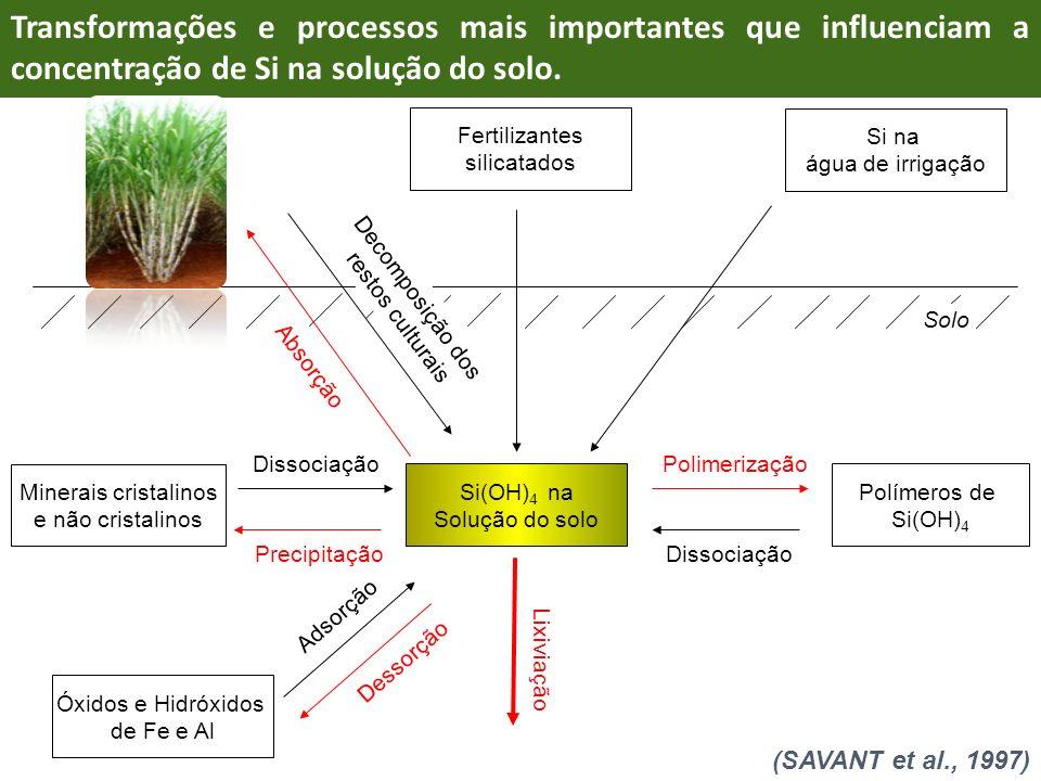 Transformações e processos mais importantes que influenciam a concentração de Si na solução do solo.