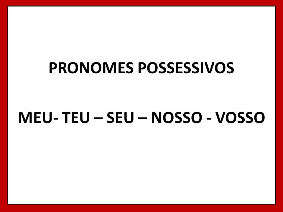 PRONOMES POSSESSIVOS MEU- TEU – SEU – NOSSO - VOSSO