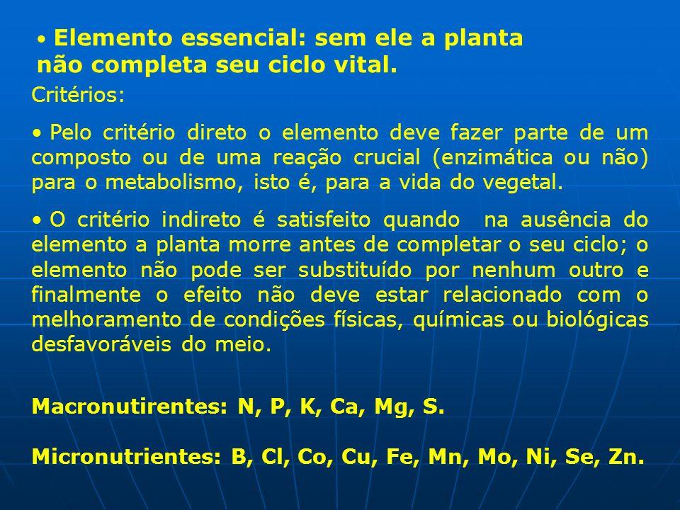 Macronutirentes: N, P, K, Ca, Mg, S.