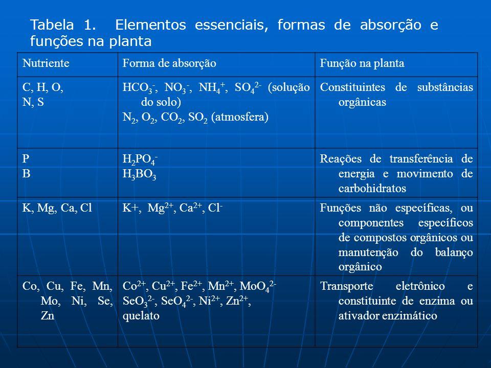 Tabela 1. Elementos essenciais, formas de absorção e funções na planta