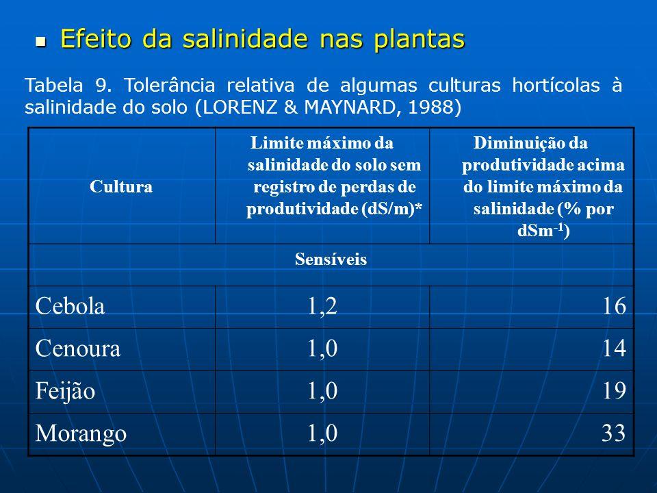 Efeito da salinidade nas plantas
