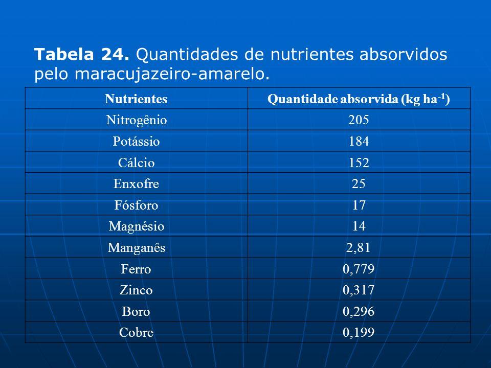 Quantidade absorvida (kg ha-1)