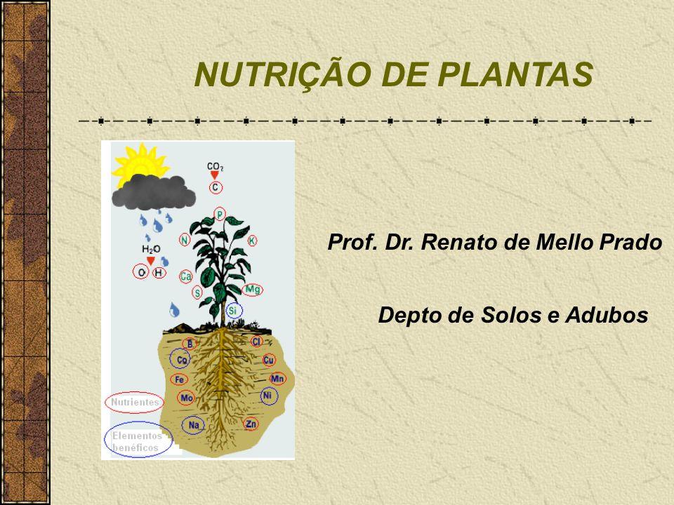 NUTRIÇÃO DE PLANTAS Prof. Dr. Renato de Mello Prado