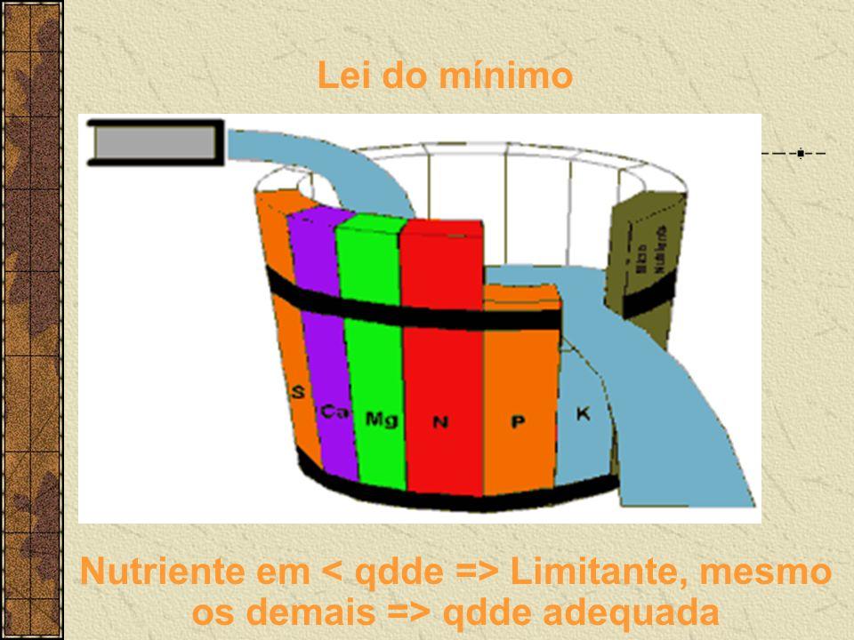 Lei do mínimo Nutriente em < qdde => Limitante, mesmo os demais => qdde adequada