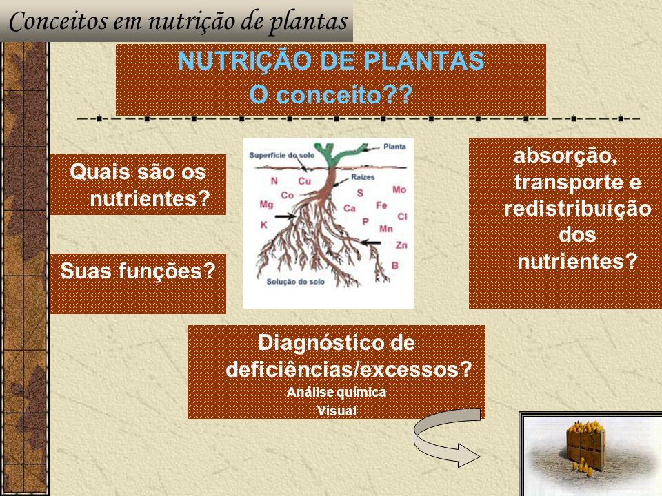 Conceitos em nutrição de plantas
