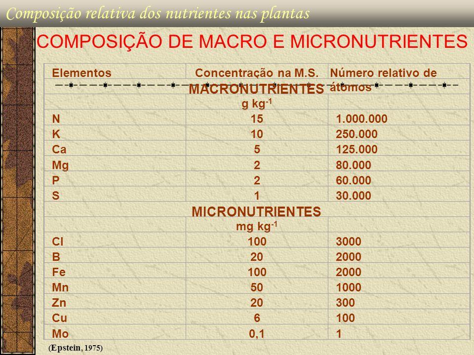 Composição relativa dos nutrientes nas plantas