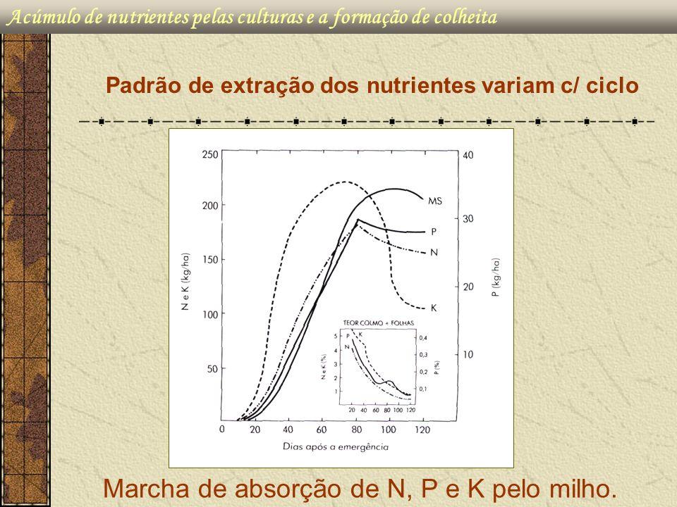 Padrão de extração dos nutrientes variam c/ ciclo