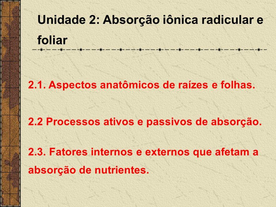 Unidade 2: Absorção iônica radicular e foliar