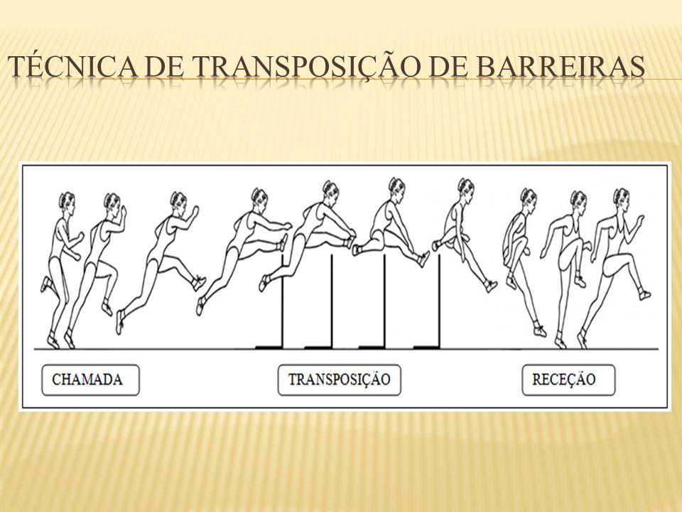 Técnica de transposição de barreiras