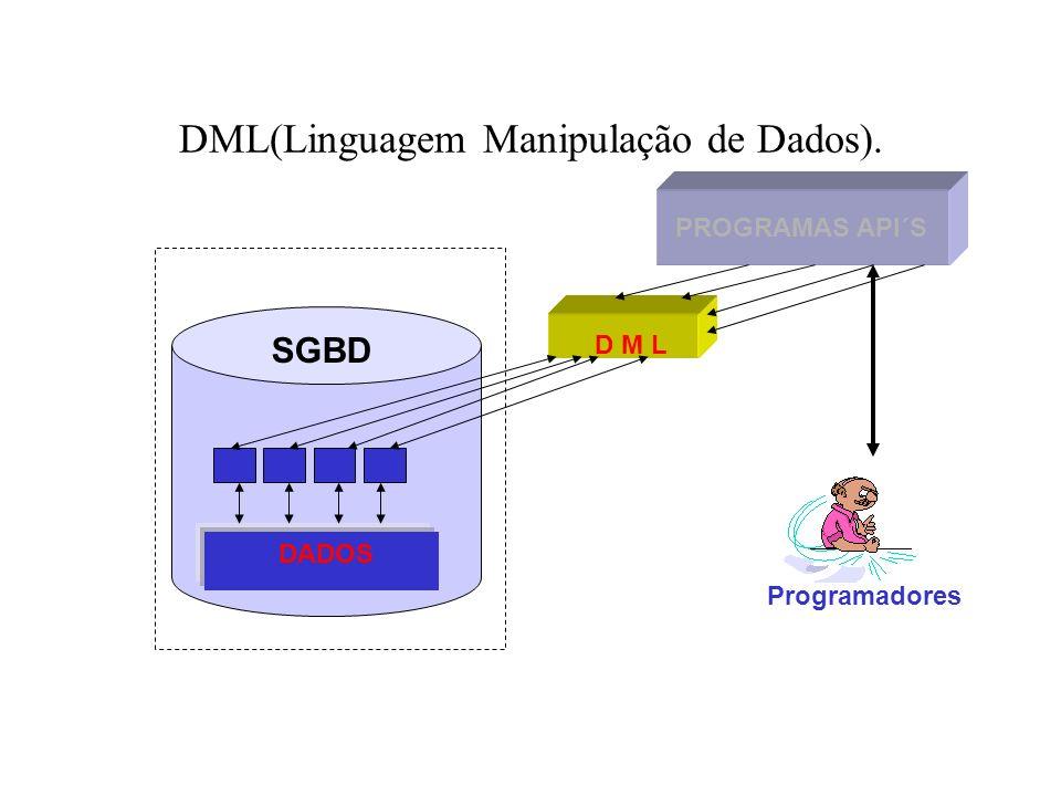 DML(Linguagem Manipulação de Dados).