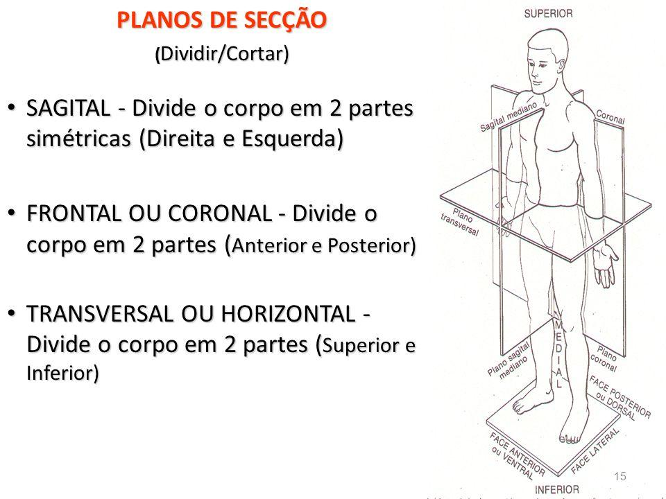 SAGITAL - Divide o corpo em 2 partes simétricas (Direita e Esquerda)
