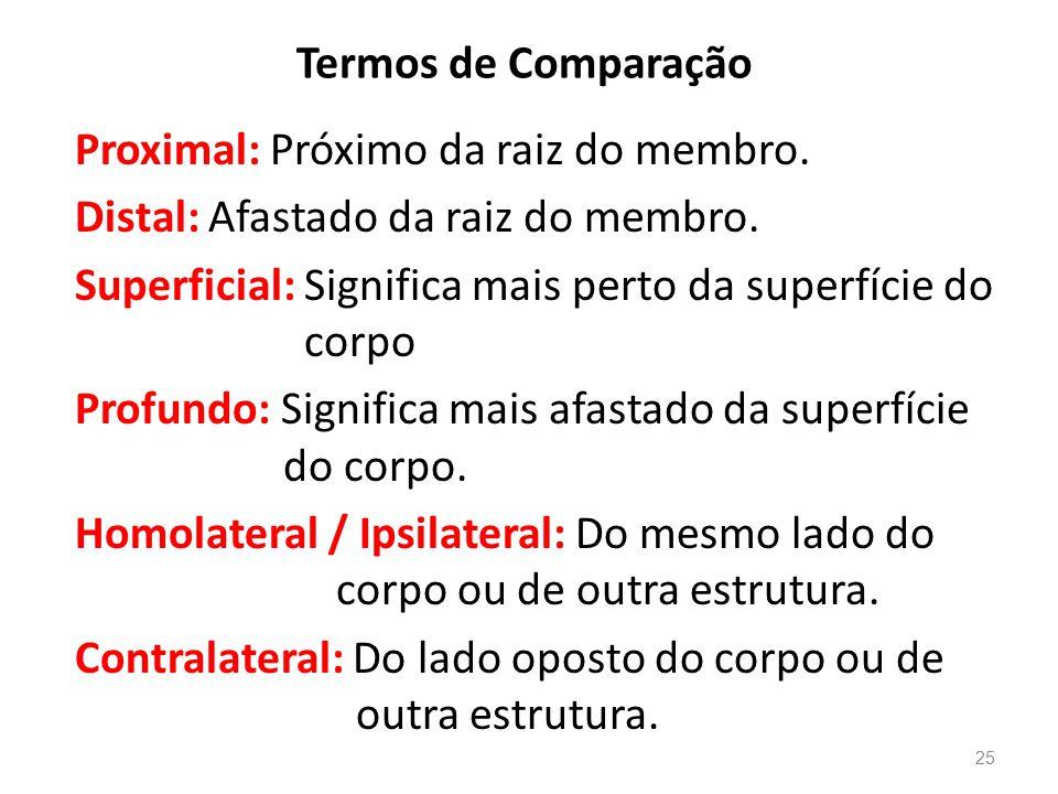 Termos de Comparação Proximal: Próximo da raiz do membro.