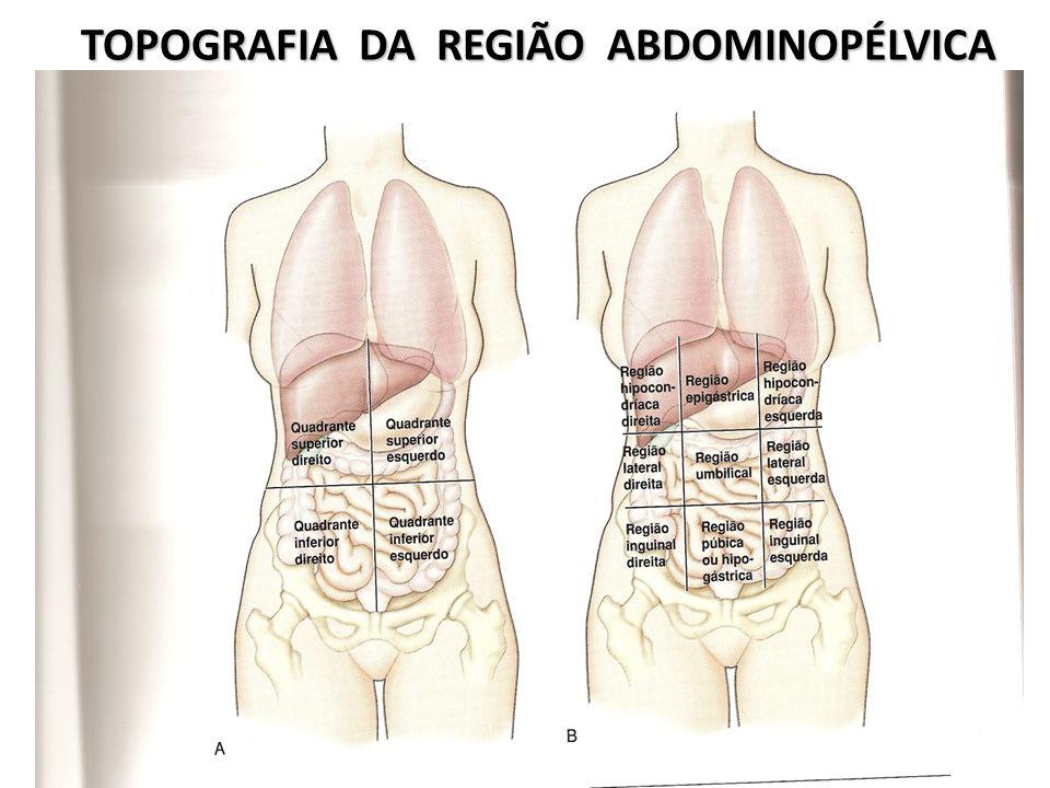 TOPOGRAFIA DA REGIÃO ABDOMINOPÉLVICA