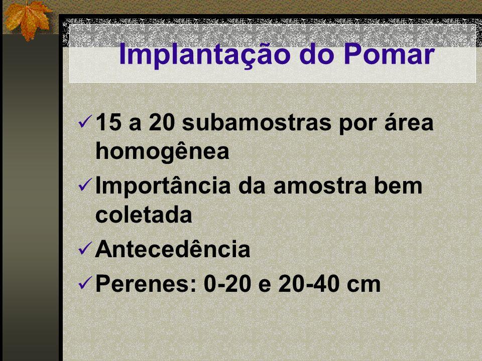 Implantação do Pomar 15 a 20 subamostras por área homogênea