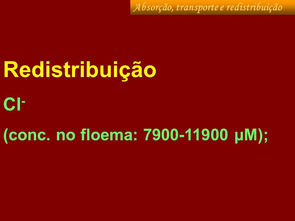 Redistribuição Cl- (conc. no floema: 7900-11900 µM);