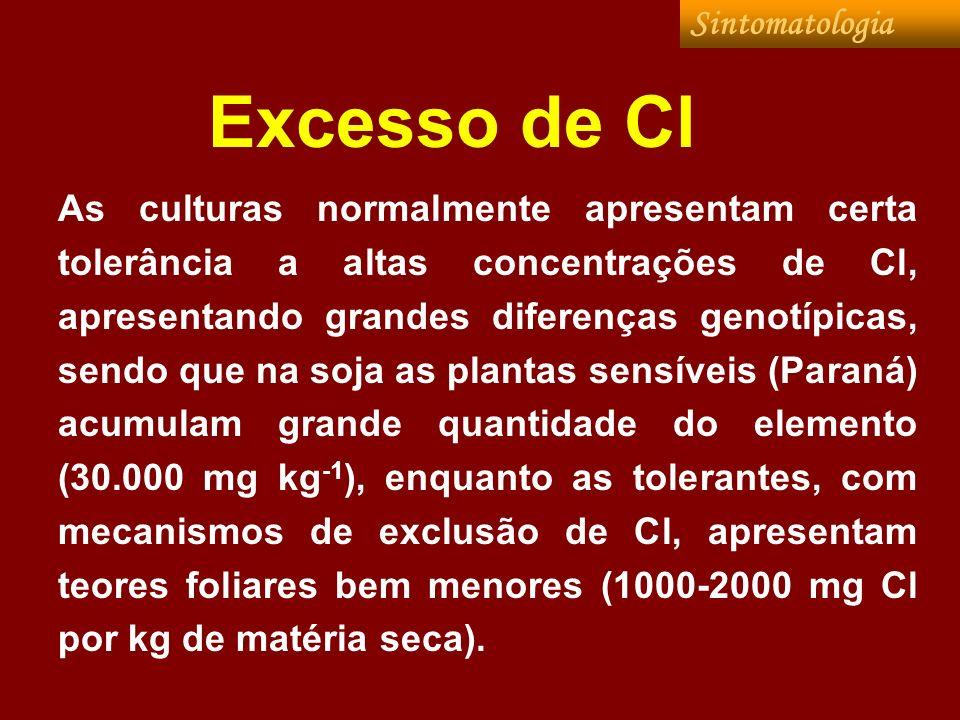 Excesso de Cl Sintomatologia