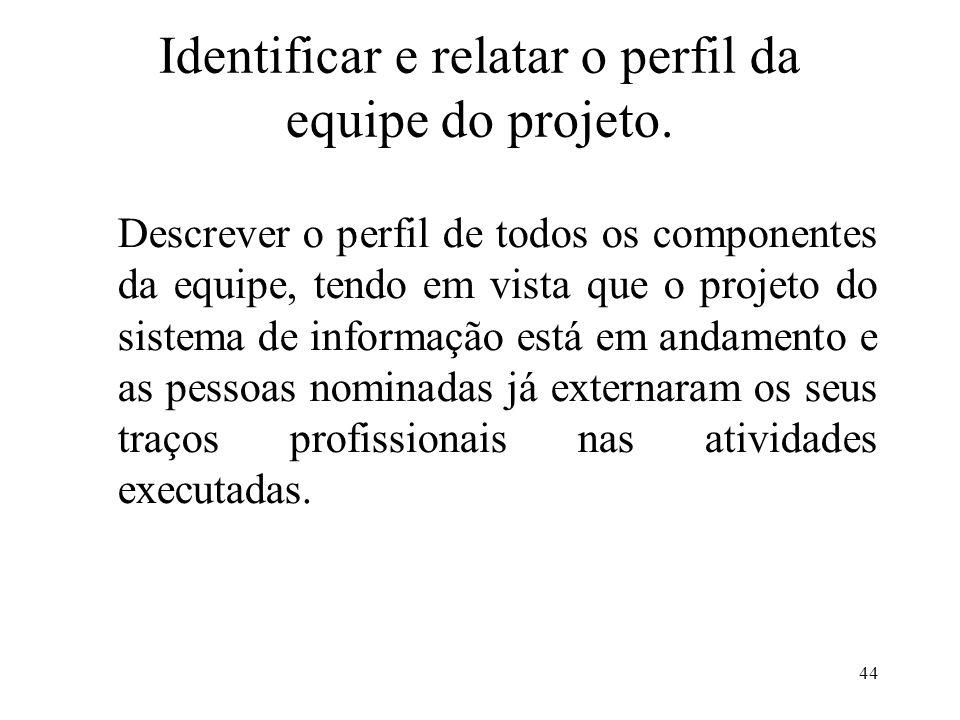 Identificar e relatar o perfil da equipe do projeto.