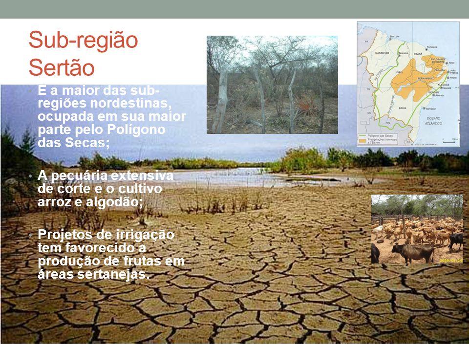 Sub-região Sertão É a maior das sub-regiões nordestinas, ocupada em sua maior parte pelo Polígono das Secas;