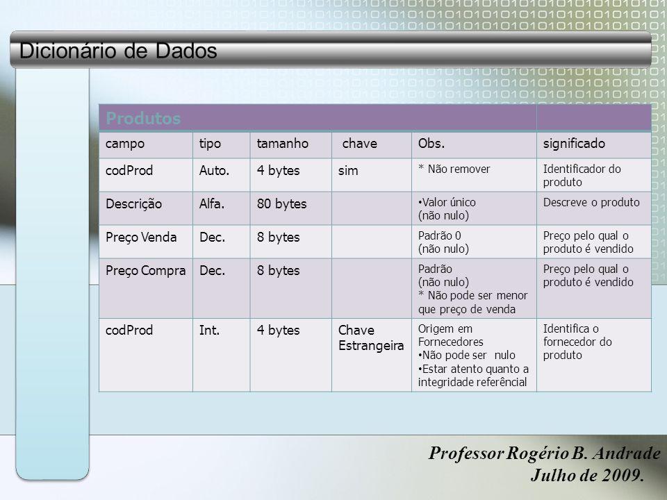 Dicionário de Dados Professor Rogério B. Andrade Julho de 2009.