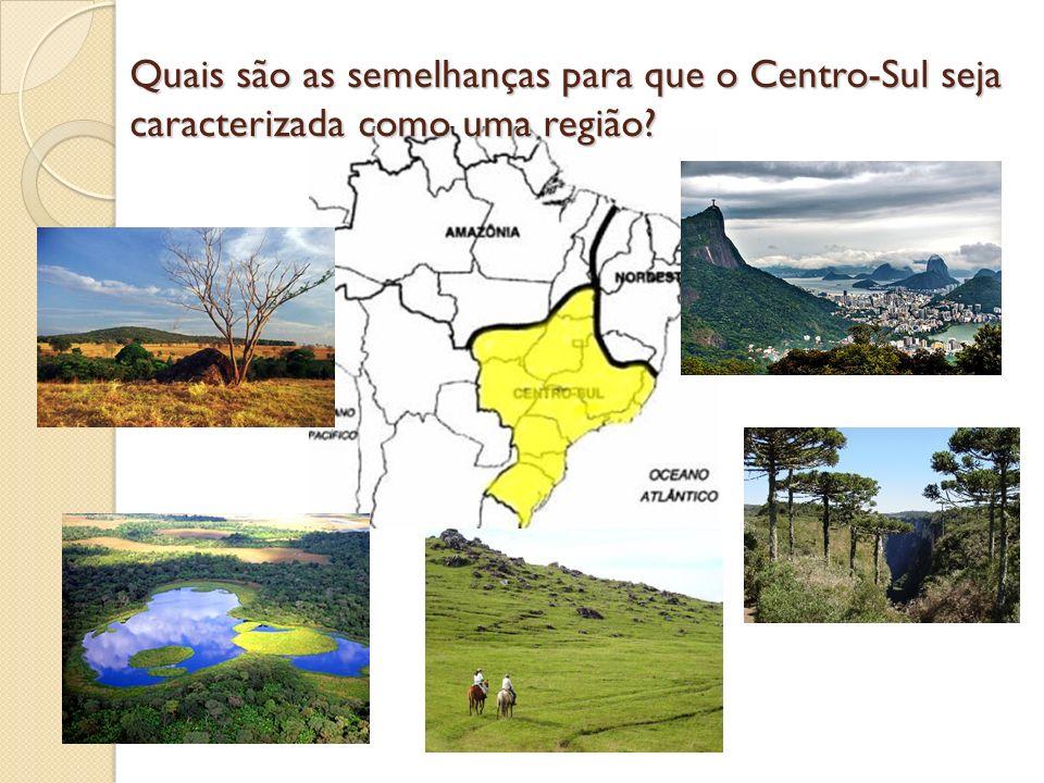 Quais são as semelhanças para que o Centro-Sul seja caracterizada como uma região