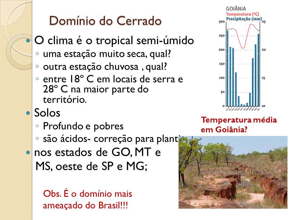 Domínio do Cerrado O clima é o tropical semi- úmido Solos