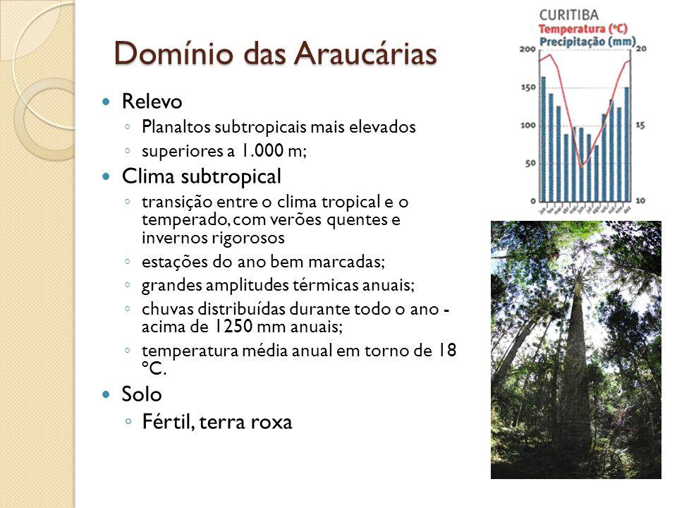 Domínio das Araucárias